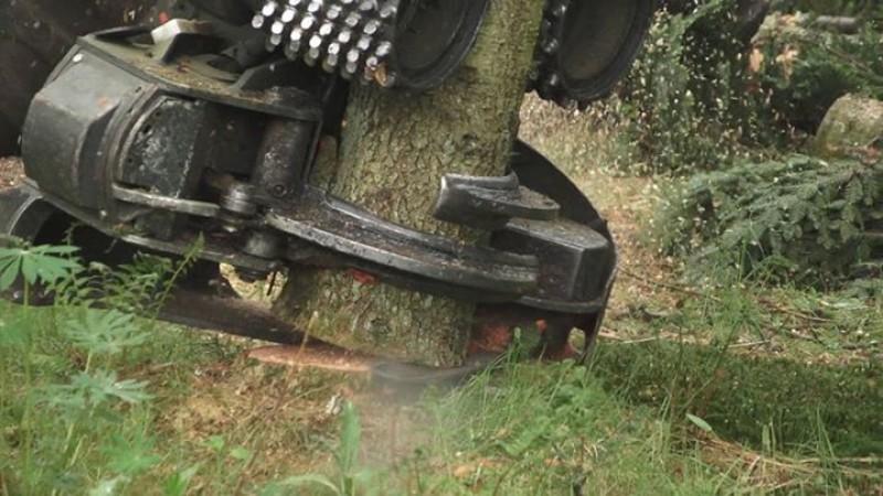 Drone video af Brdr Willemoes på fældebunkelægger opgave ved Give, Midtjylland